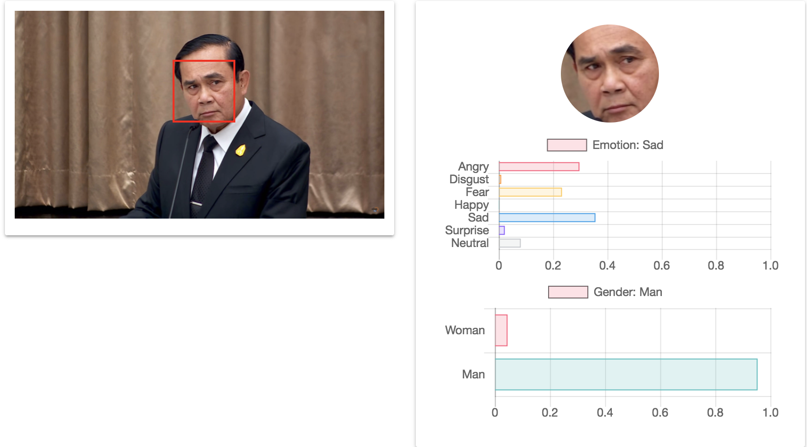 Face Classification on Web Browser using TensorFlow.js